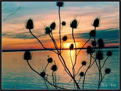 Photo : Petit port de la belle Etoile - N06,  France, Couleurs vives, Couchers de soleil, Contre-jour, Gironde, Silhouettes. Toutes les photos de Bernard GUILLON sur L'Internaute