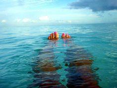 .. toes at sea ..