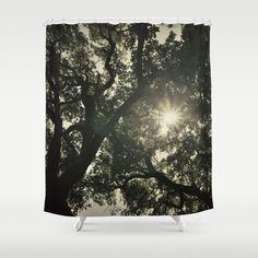 photo,photography,nature,tree,forest,sun,sunrays,landscape,texture,vintage,retro,