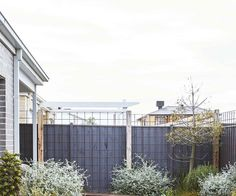 Sorting out a multi-level garden with beds sporting vibrant, low-growing plants has made this coastal patch in Torquay a standout. Lush Garden, Terrace Garden, Tropical Garden, Garden Plants, Australian Native Garden, Australian Plants, Coastal Gardens, Beach Gardens, Landscaping Along Fence