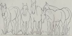 line drawings of horses   Five Horses Continuous Line Drawing