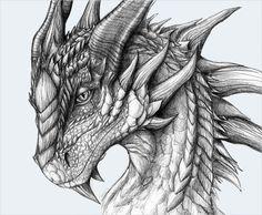 21+ Realistic Dragon Drawings | Free & Premium Creatives