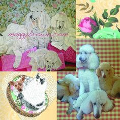 This makes 7 custom poodle collages in a row. Would someone challenge me to another breed? maggybrown.com