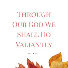 I can repeat this scripture to myself a million times and feel it's fresh punch of power every time I say it  Through our God!! Not by powernot by might  but through our God ! By His ability in us and through us.. we shall do valiantly!  We will do crazy things. We will do unimaginable things. We will do small things. We will do big things. We will take our world. We will set it on fire. We will blaze through like stars shining in all their strength. We will rise. We will soar. We will fly…