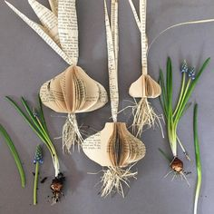 """144 Likes, 6 Comments - Clare Youngs (@clareyoungs) on Instagram: """"Paper Spring bulbs - a project I made for my new book Folded Book Art. #papercraft #arteveryday…"""""""