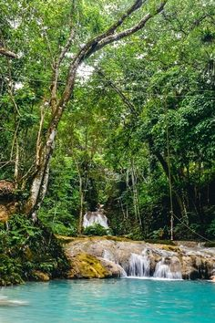 Unmissable things to do in Ocho Rios in Jamaica
