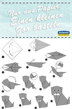 Ein Blatt buntes Papier und unsere Anleitung - mehr brauchen Sie nicht, um witzige Origami-Tierchen zu basteln. Wir haben Ihnen unsere persönlichen Highlights rausgesucht: Einen Seehund, eine süße Katze und ein Häschen.