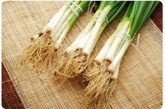 Don't pay for green onions - grow your own by sticking the white ends (green trimmed off) in a jar with 2 inches of water - sit in a sunny place, new onions in a week!