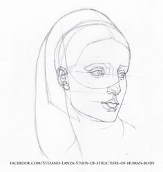 https://www.facebook.com/Stefano-Lanza-Study-of-structure-of-human-body-1479159998770051/ #head #anatomy #draw #drawing