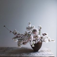 Sakura #sakura #cherryblossom 錆びた鉄の器にいけました。