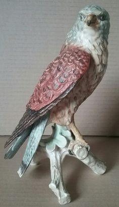 Goebel falcon 8