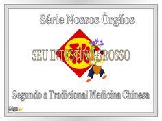 Segundo a Tradicional Medicina Chinesa Olga Série Nossos Órgãos SEU INTESTINO…
