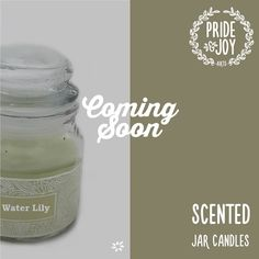 Aquatic white flower notes make this scent a must-have for fresh, breezy or ocean type fragrances. #Candles #HomeDecor #Flipkart #Amazon #Snapdeal #Zansaar #Shopclues #PayTm #Limeroad #Shopping #India #DecorativeCandles #DriplessCandles