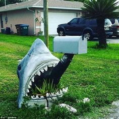 Jaw-dropping: Why have a regular postbox when you could have one protruding from the open mouth of a deadly sea fish? Prickly Cactus, Design Fails, Make Do And Mend, Astro Turf, Unusual Plants, Garden Pictures, Gnome Garden, Topiary, Water Features