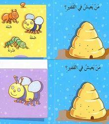 Lift the Flap Mini-Where Do I Live?  أين أعيش؟ Arabic children's mini-flap book.