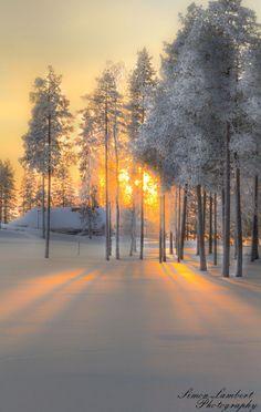Winter wonderland #Finland. Stunning #nbeFinland #Matkamessut
