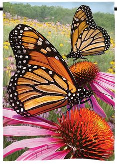 Buy this beautiful monarch butterfly garden flag with images by wildlife photographer Jim Rathert. Butterfly Drawing, Butterfly Painting, Butterfly Watercolor, Butterfly Chrysalis, Monarch Butterfly, Garden Drawing, Butterfly Pictures, Animal Tattoos, Beautiful Butterflies