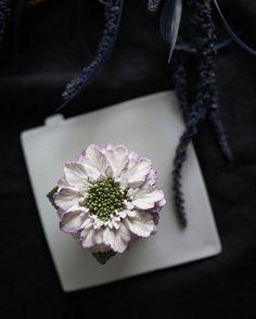 This is the Scabiosa by EEDO... with sweet and mild buttercream... #buttercream #flowers #buttercreamflowers #scabiosa #beanpasteflower #koreanflowercake #flowercakeclass #koreancake #Seoul #Koreandessert #Koreanfood #flowercake #present #momstagram #eedocake #이도어무니 #이도케익 #bakingclass #bakerystudio #ricecake #ricecakestudio #韓式唧花 #鲜花蛋糕 #鮮花蛋糕 #굿윌헌팅#cakedecorating #cakedesign