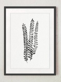 c68af05ea0c Fern Illustration set 2 Ferns Black White Grey Watercolour