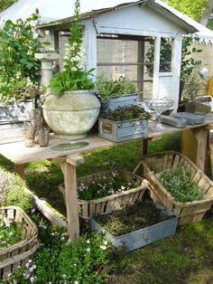 /LOVELY SETUP, GARDEN WORKTABLE, I WOULD NEED THIS, SMALL DIY SHED 4 GARDENING SUPPLIES OF ALL TYPES/NEEDS .... EXCEPT SEED STORAGE...HERMETIC/VACUUM SEALED SYSTEM= LONGEVITY ICREASED