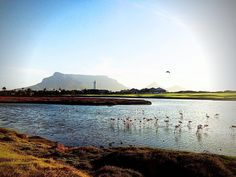 Snapped on my cycle. Cape Town at its best  #photooftheday #photo #capetown #followme #follow