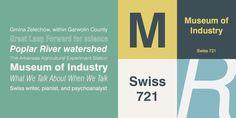 Swiss 721™ - Webfont & Desktop font « MyFonts