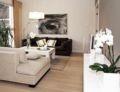 Ruskea olohuone sohva Aveo Vaasa