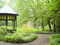 Cómo elegir las plantas para un jardín sostenible - http://www.jardineriaon.com/como-elegir-las-plantas-para-un-jardin-sostenible.html