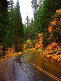 Sequoia National Park | Sequoia National Park in Fall/Autumn