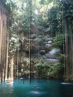 Cenote in Mexico--I was here and it was even more amazing in person! <3