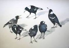 Image result for magpies family