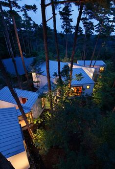 This guest house consists of interconnected boxes that meander between the trunks of cherry and pine trees in a forest