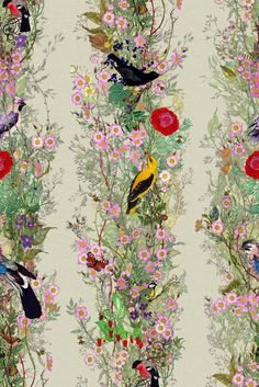 The Fruit Looters wallpaper. As part of their year in textiles and surface design, Timorous Beasties launch a new design trinity in debt to the great master, William Morris. Fabric Wallpaper, Of Wallpaper, Designer Wallpaper, New Design Wallpaper, Textured Wallpaper, Drops Patterns, Textures Patterns, Print Patterns, Chinoiserie