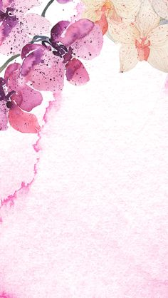 Pretty pink back ground Iphone 5s Wallpaper, Screen Wallpaper, Wallpaper Backgrounds, Floral Backgrounds, Cellphone Wallpaper, Phone Backgrounds, Flower Wallpaper, Pattern Wallpaper, Inspiration Artistique