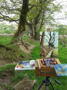 PAINTING OAK TREES IN THE SPRING