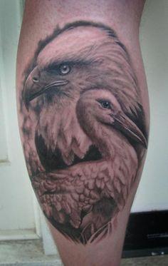 Steve Wimmer - Bald Eagle and Stork