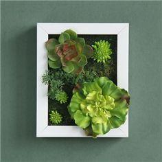 Wall Garden Framed Artificial Plant Wall Art - Mixed Succulents A-1