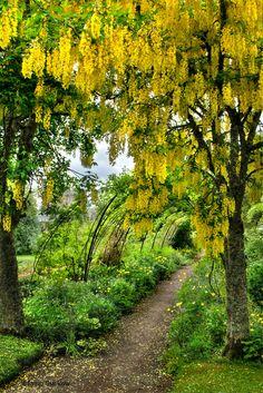 Cawdor Castle Gardens, Scotland.