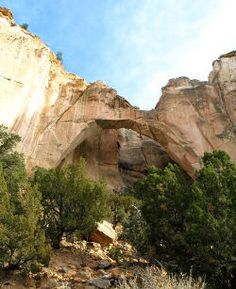 El Malpais National Monument, New Mexico    El Malpais National Monument  123 E. Roosevelt Avenue  Grants, NM 87020-2017  Information Center: (505) 783-4774