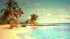 topical paradise maldives island wallpaper free full high quality download