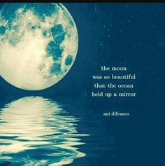 The moon was so beautiful that the ocean held up a mirror. Ani Difranco