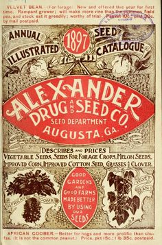 Alexander Seed Co Annual illustrated seed catalogue