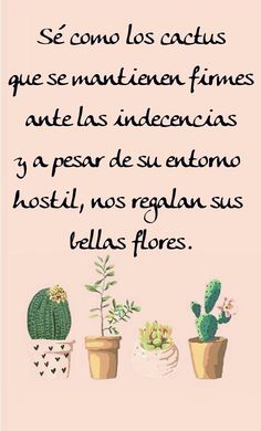 Cactus Wallpapers The Effective Pictures We Offer You About cactus macetas A quality Cactus Art, Cactus Flower, Cactus Plants, Cactus Pics, Brene Brown Quotes, Flower Symbol, Catus, Lessons Learned In Life, Gardens