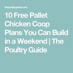 10 Free Pallet Chicken Coop Plans You Can Build in a Weekend | The Poultry Guide
