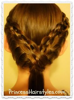 The Braided Ledge from Princess Hairstyles