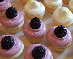 Mini lemon cupcakes with fresh blackberry buttercream.