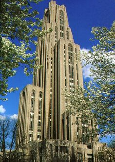 University of Pittsburgh  (The picture is of the Cathedral of Learning)