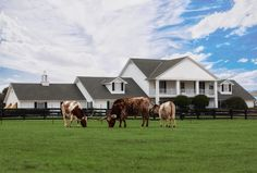"orever Resorts is betting that guests will pay a pretty penny to inhabit the place, if just for a night or two. A new package, dubbed ""Live and Dream Like a Ewing,"" allows for up to six people to stay overnight at the big, white ranch home in the hamlet of Parker"