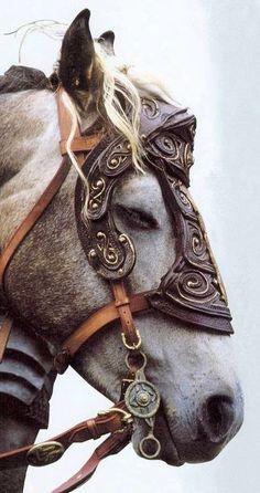 Visit www.okokonia.com for more awesome horse stuff! Horse bridle browbands! Gladiator horse bridle