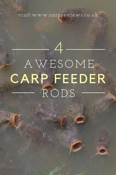 As a match fisherman you want the fastest, most effective technique to bag as many carp as possible. The feeder technique is the king of catching carp quickly and efficiently and if you want to take advantage of it, you'll need the right gear for the job.
